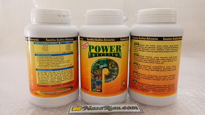 power nutrition 500 gram